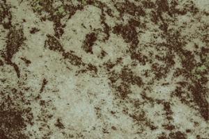 Виниловая плитка LG Decotile 5329