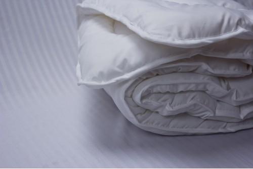 Детское одеяло Lotus Soft Fly svk-2508/17048